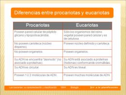 Bacterias y Virus - Liceo Leonardo Murialdo