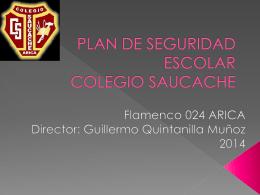 PISE Inspectoría 2014