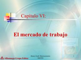 Capítulo VI: El mercado de Trabajo