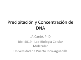 Lab4_Precipitacion_Concentracionde_DNA