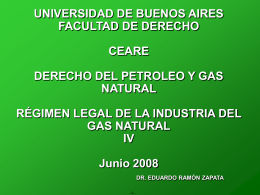 TRANSPORTE Y DISTRIBUCIÓN DEL GAS NATURAL EN LA