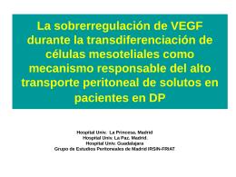 La sobrerregulación de VEGF durante la transdiferenciación de