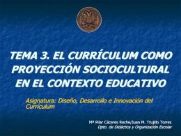 cursos de doctorado realizados durante el periodo