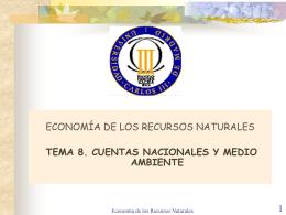 TEMA 8. Cuentas Nacionales y Medio Ambiente