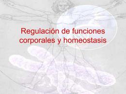 Homeostasis - Liceo Leonardo Murialdo