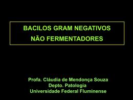 Apresentação do PowerPoint - Universidade Federal Fluminense