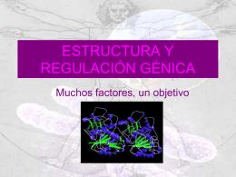 Estructura y regulacion genica II