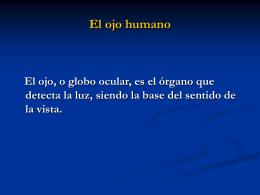 El ojo humano- Guillermo 6º B