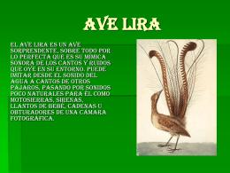 AVE LIRA