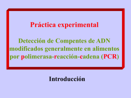 Alu-TPA PCR Kit