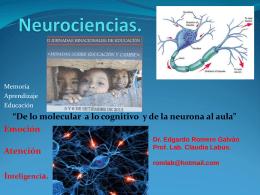 Neurociencia de lo molecular a lo cognitivo