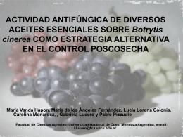 ACTIVIDAD ANTIFÚNGICA DE DIVERSOS ACEITES ESENCIALES