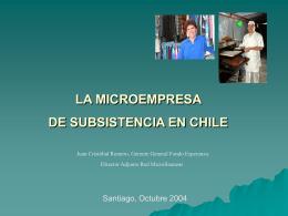La Microempresa de Subsistencia en Chile.