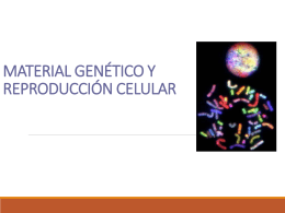 Descargar 2_Medio_Biologia_Materia_Genetica_16-03