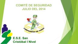 COMITÉ DE SEGURIDAD JULIO 2014