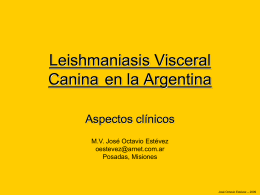 Leishmaniasis Visceral Canina CD Santa Fe