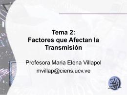 Tama II.2 Prof Villapol