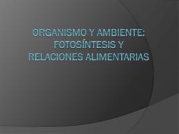 Organismo y ambiente. fotosintesis