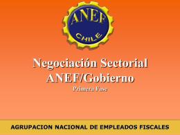 ANEF: Acción y Negociación