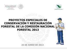 Presentación Proyectos Especiales 2013