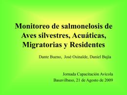 Monitoreo de Salmonella en aves silvestres