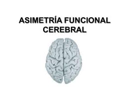 Asimetría Funcional Cerebral: Elementos Históricos