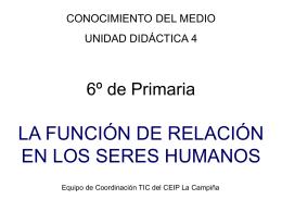 4 la funcion de relacion en los seres humanos
