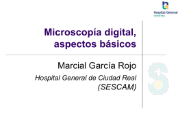 Imagen digital, telepatología y congreso virtual