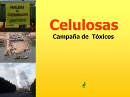 Presentacion en Power Point sobre campaña Celulosas