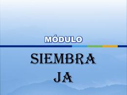 La siembra - Unión Venezolana Antillana