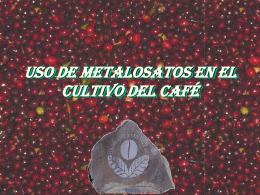 USO DE METALOSATOS EN EL CULTIVO DEL CAFÉ