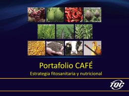 portafolio_ppt_cafe
