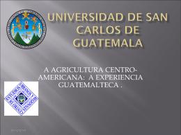 """""""Historia del Desarrollo Económico de Guatemala, 1950-2000"""""""