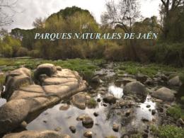 Qué es un parque natural?