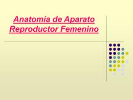 Anatomía de Aparato Reproductor Femenino