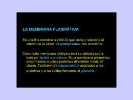 membrana_transporte_