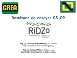 Gruesa 2007 – 2008