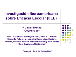 Investigación Iberoamericana sobre Eficacia Escolar (IIEE)