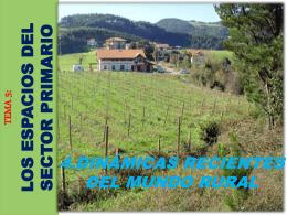 4.dinámicas recientes del mundo rural