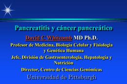Pancreatitis and Pancreatic Cancer in Spanish