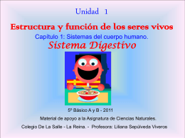 sistema digestivo5A - Liceo Leonardo Murialdo