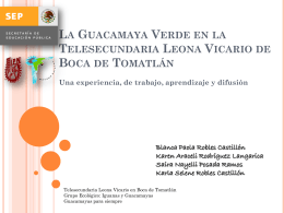 La Guacamaya Verde en la Telesecundaria Leona Vicario de Boca