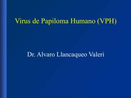 Dr. Alvaro Llancaqueo