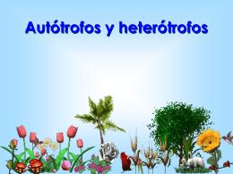 autotrofos_y_heterotrofos