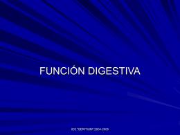 Función digestiva