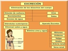 Diapositiva 1 - giulianocaicedo