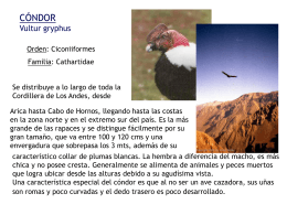 to file - Biodiversidad En Chile