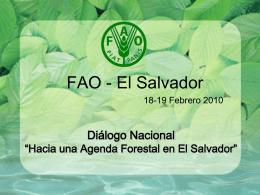 """Diálogo Nacional """"Hacia una Agenda Forestal en El Salvador"""