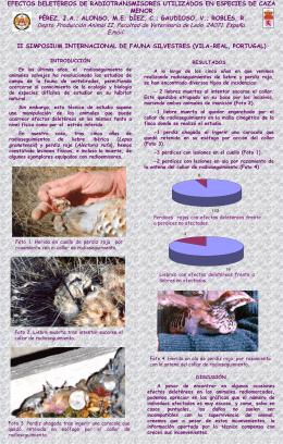 Efecto radiotransmisores en especies de caza menor(1152 kB.)