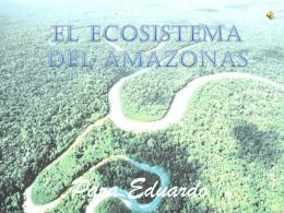 Christiam Martínez Blánquez (2ºA): Amazonas.